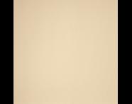 K353204 - 100x10 Collection Fon Fildişi Mat