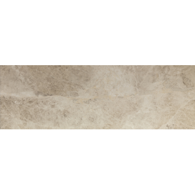 33x100 Inside Tile Grey Glossy