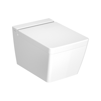 Frame Rim-ex wall-hung WC Pan, 54 cm, matte white