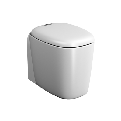 """Plural Back to Wall Single WC Pan 55 cm, universal Outlet, with hidden bidet function"""