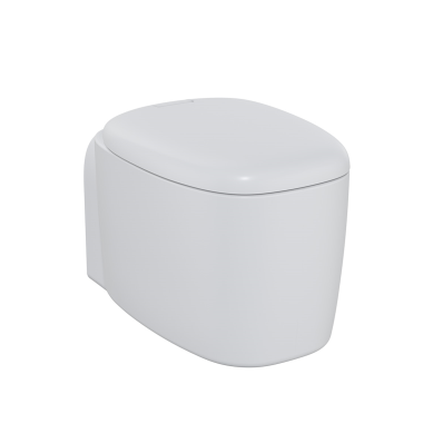 """Plural Rim-ex Wall-Hung WC Pan 55 cm, with bidet function, hidden fixation, """