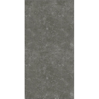 30x60 Ararat Dark Grey Tile LPR