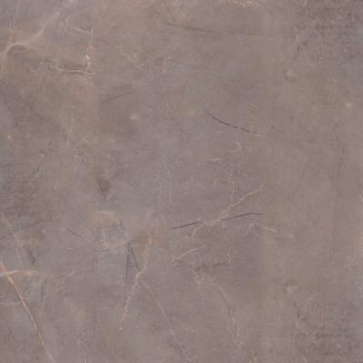 60x60 Celebration Tile Mink Semi Glossy