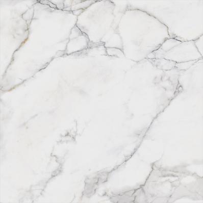 80x80 Calacatta White Tile HonedTouch